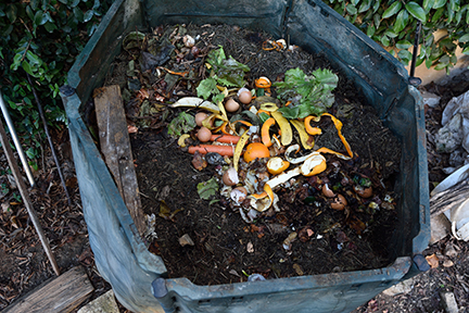 Vegetables and soil in a compost bag
