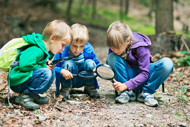 Kids with magnifying glasses in the woods